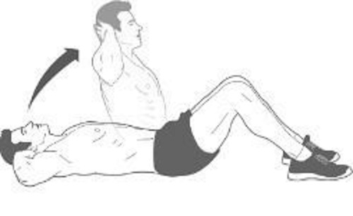 exercices abdominaux de sit ups